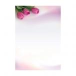 Dekoratiivpaber A4/100g, 50 lk/pk Fanfana